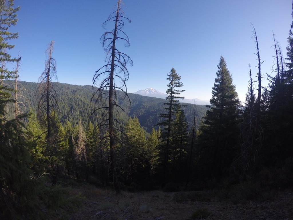 U daljini Mount Shasta