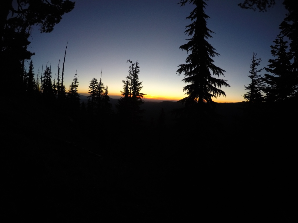 Čarobne, šumske zore...