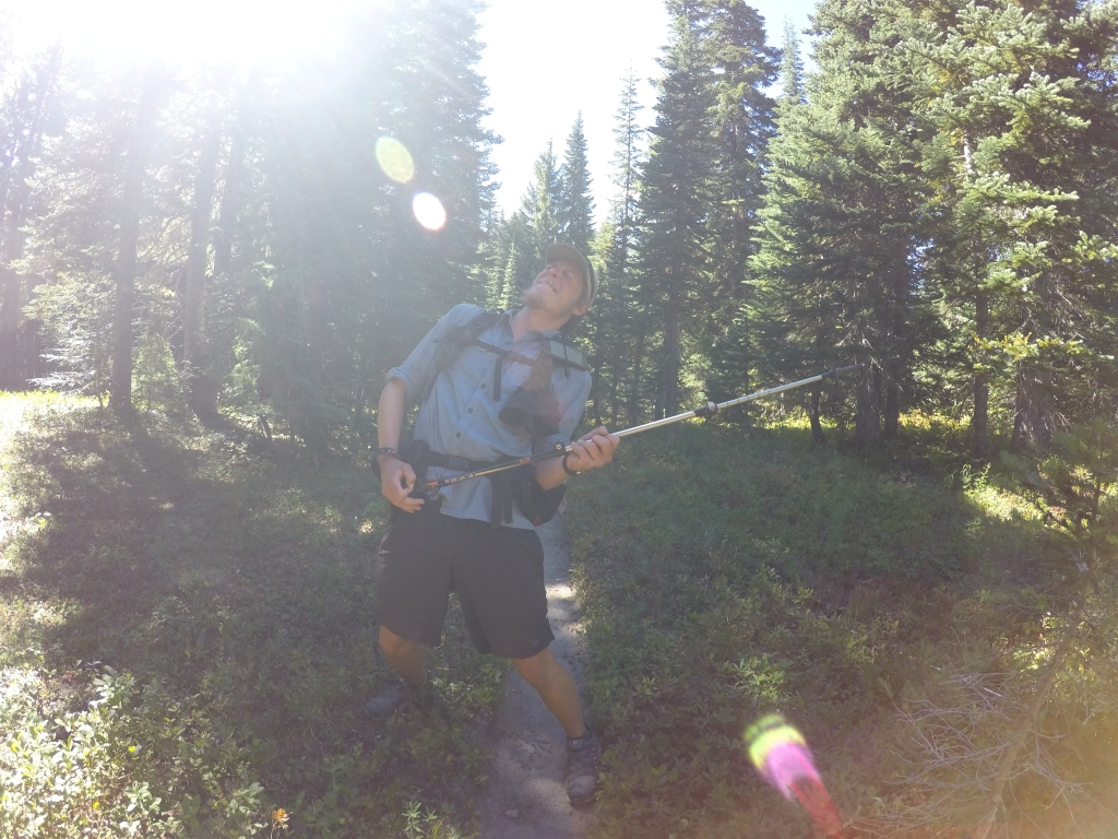 Yardsale svira trekking pole guitar :)
