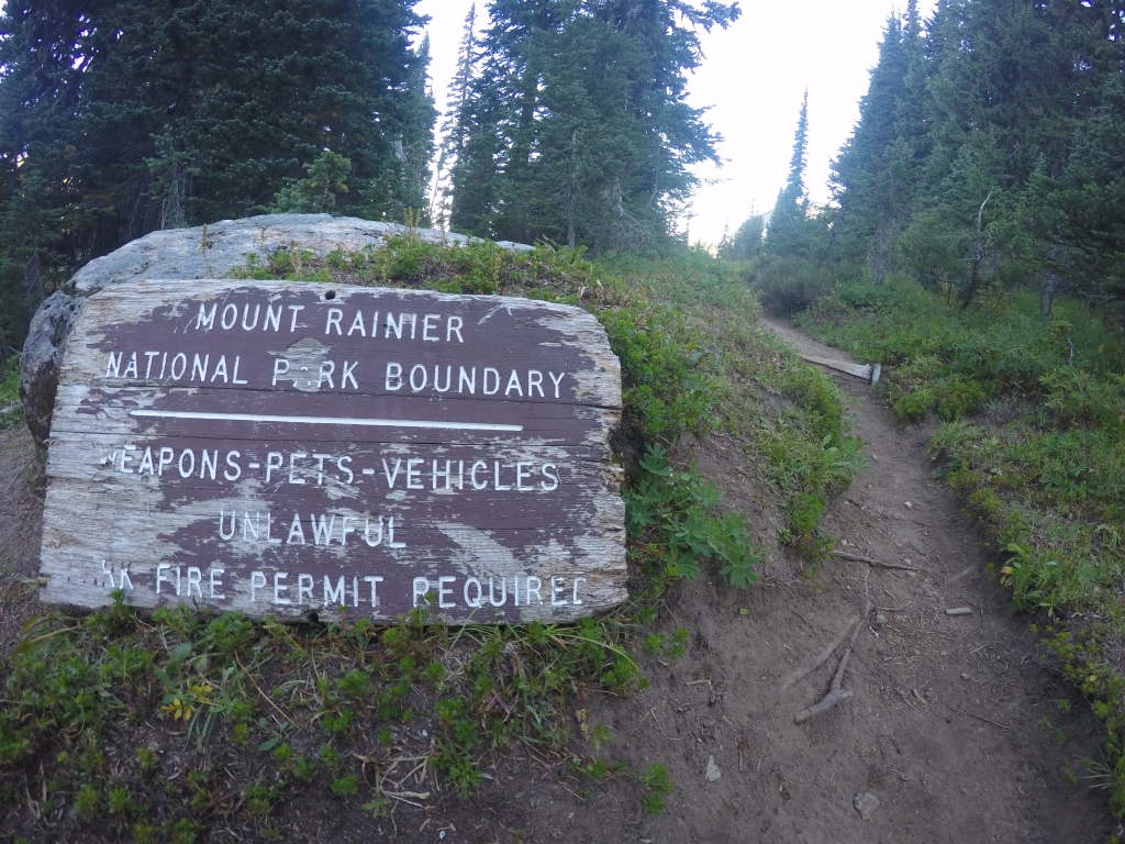 Ulazak u NP Rainier.....ploča me duboko razočarala.....